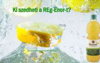 Ki szedheti a Reg-Enor-t?