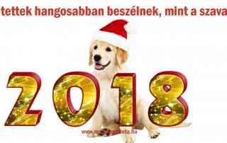 Újévi fogadalmak - 2018