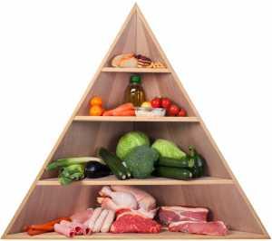 Koleszterin diéta - zsír - epesav