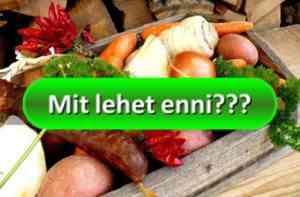 Mit lehet enni a Reg-Enor diéta alatt?